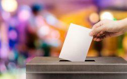 img-destacada-elecciones
